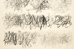 Sin título, 1976  Grafito sobre papel  50,8 x 36,3 cm  Colección Familia Ferrari