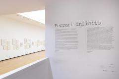 Ferrari_Infinito_sala-2